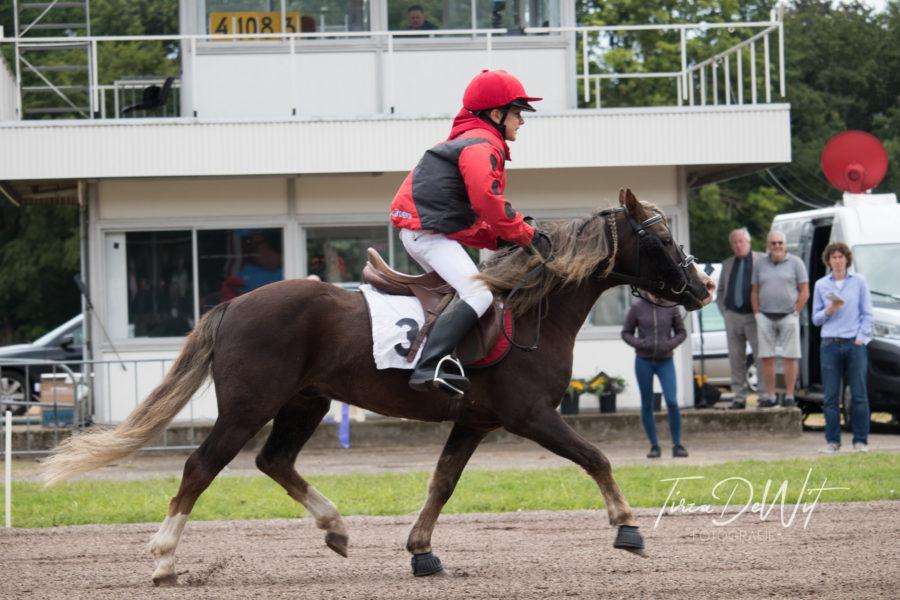 Winnaar Joris Leusink en zijn pony Pumphill Rumbly, monté mini-draverij op 07-07-2019